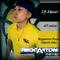 DJ Mauri Reggaeton Fever Mix (March 2013)