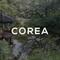 """IXP: """"COREA #5"""""""