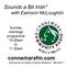 Connemara Community Radio - 'Sounds a Bit Irish' with Eamonn McLoughlin - 18feb2018