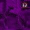 THE ULTRAVIOLET GLIDE // 009