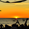 Sweet Heat #007 - Ibiza Sunrise-Sunset