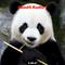 PandA Radio 1 - OverCaffinated - 5.30.17