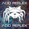 Acid Reflex December 2017 Promo mix