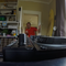 Bitroom Beats Reality – Arms & Guts