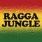 RAGGA JUNGLE VOL 2 DJ MCRAE