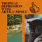 TROPICAL DEPRESSION WITH AKVILE ZRNKT