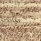 Riffology