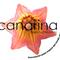 Proyecto Econsumo-Ecogestión (Podcast 003) ONG Canarina