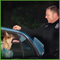 """Steve White – ProActive k9; Get """"curious"""" with your animal training."""