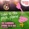 Flamingos Spring Diva Mix 2018