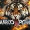 MARCO POMA WB