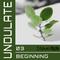 Beginning (Undat03)