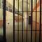 """Enrique Rodrigo: """"Cada vez hay más funcionarias de prisiones que están siendo agredidas sexualmente"""""""