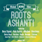 Roots Ashanti - Wicked Vibes XIII (January 2017)
