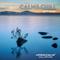 Calm&Chill by DJ Bauer - Harmonium®Chill Station SundaySession -
