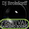 Festival Banging Sound