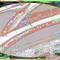 Abbrumer (17/09/21) w/Abbrumer