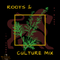 141 SOUND - ROOTS & CULTURE MIX [DJ BIGGS].mp3