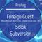 Subversion Introset 4. Mai 2018 @Klaus Zürich
