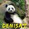 Pandan Dolofan / Chasing Butterflies / Iubirile Ciudate Se Termina Cu O Promisiune