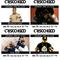 2015-06-20_CriscoKiddBlockParty_Skeme_Brandon Lewis_ Mo Stylez_Rob Write