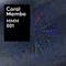 Coral Mambo Mini Mix 001