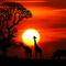 Oliver Koletzki - Sunset at AfricaBurn by MichaaaFM