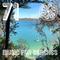 Music for Beaches 71