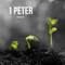 Announcement: New East Nashville Pastor, Brant Bonetti! - 1 Peter