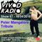 Vivod Radio 067 Peter Mangalore Tribute