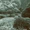 Giardino Pieno di Suoni / Rem Gow