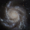 Flo'bo Frequencies 002: Spiral Arm Separation Initiative
