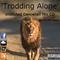 Trodding Alone