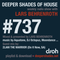 Deeper Shades Of House #737 w/ exclusive guest mix by 2LANI THE WARRIOR