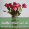 Soulful Affair Vol. 25