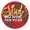 dj SHINDER – Big Wine Mix 029