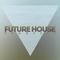 Future House (65)