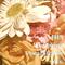 JHS - Spring VocalHouse mix.