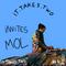 it.takes.two INVITES °8: Mol (Flying Lotus, Khruangbin, Bonobo, BadBadNotGood, NxWorries...)