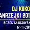 DJ KOKOS - Andzejki w Brzegu Głogowskim [17-11-2018]