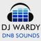 Dj Wardy - DNB Mix June 16