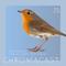 Chromacast 25 - Jeff Devoe - Live at Camp Trip: Oasis