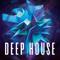 Deep House #4