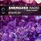 Energized Radio 065 with Derek Palmer