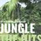 Mixed Feelings Promo Jungle Mix 2018 by Vj Define