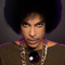 Tribute to PRINCE by FIP