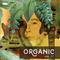 Organic vol. 27 by Roberto