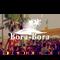 Horace @ Bora Bora 2018 - Part 1