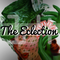 The Eclection #14 - 17.03.15