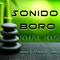 Sonido Boro mixed by Senderos Canningham
